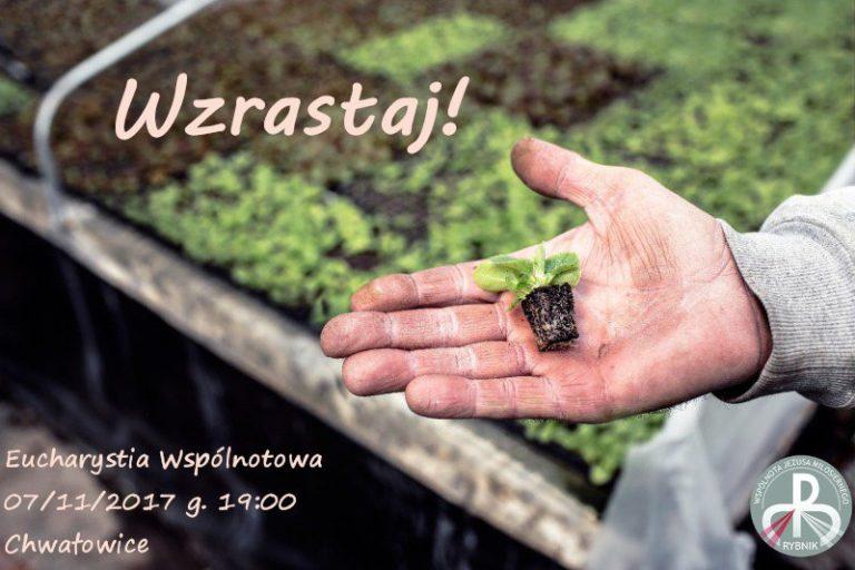 /var/www/jezusmilosierny.pl/public/assets/9897308 299H