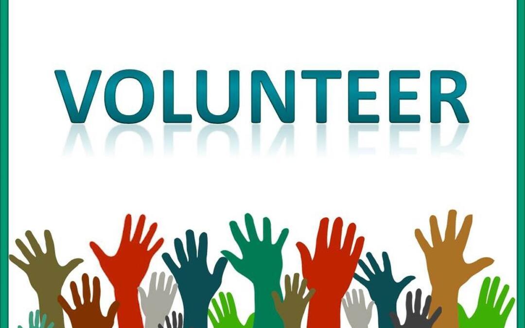 Potrzebni wolontariusze!